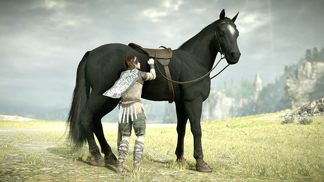 Petting your horse